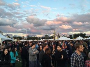 Riot Fest 2015   Douglas Park